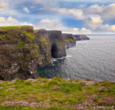 Cliffs of Moher BuS Tour